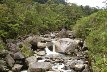 Anulan reservas nacionales en el sur de Ecuador